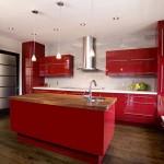 Virtuves sala 29