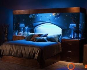 Be galo originalus lovos galvūgalis