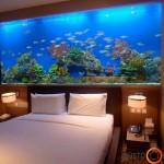 Didingas jūrinis akvariumas miegamajame