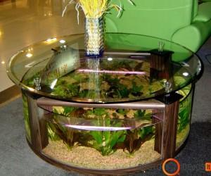 Akvariumas puikiai tinkamas ne tik grožiui