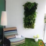 Augalų sienelė