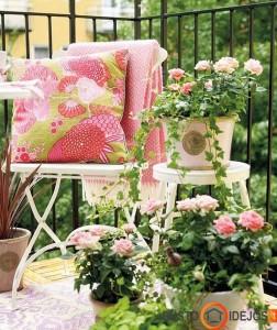 Rožės suteikia romantikos balkone