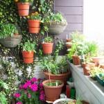 Jei nėra daug vietos balkone, vazonus kabinkite ant sienos