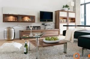 Tik būtiniausi baldai ir įmantrus kavos staliukas