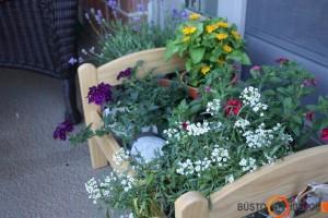 Mažų gėlių vazonėlių laikymo vieta gali būti ir vaikiška lėlės lovytė