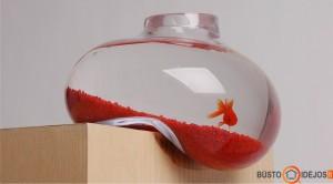 """""""Vienvietis"""" akvariumas gali būti ir tokios formos"""