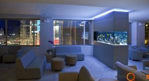 Akvariumas gali puikiai apšviesti patalpą