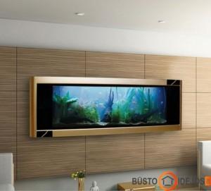 Turint tokį akvariumą, tikrai nebereikia televizoriaus