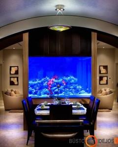 Valgomajame taip pat labai tinka statyti jūrinį akvariumą