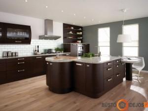 Prabangi erdvi virtuvė su dviem langais