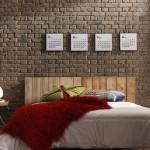 Tamsią plytų sieną sušvelnina šviesi lova ir mažyčiai paveiksliukai