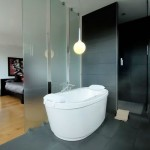 Pilkoje zonoje išskirta vonios ir dušo erdvė